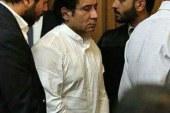 """أحمد عز يتعهد أمام """"الجنايات"""" بإتمام التصالح مع الدولة بـ""""تراخيص الحديد"""""""