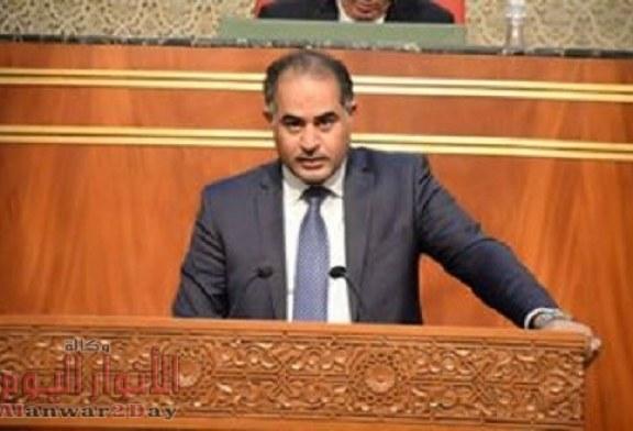 وكيل النواب: تصريحات البرلمان الأوربي ورئيسه تجاه مصر تجاوزات الحد