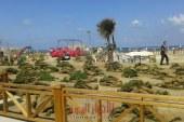 محافظ الإسكندرية يتفقد شواطئ كورنيش الإسكندرية تزامنا مع الاحتفال بأعياد الربيع