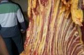 """"""" بيطرى الفيوم """" ضبط لحوم مريضة وتحرير ٦ محاضر ذبح خارج المجازر الحكومية بسنورس"""