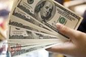 الدولار يرتفع 3 قروش لأول مرة منذ شهر ونصف