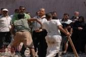 تبول حمار يشعل مشاجرة بالشرقية ويودي بحياة شاب ويزج بـ 16 متهما في السجن