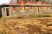 حريق مزرعتين للدواجن بقرية دمرو التابعه لمركز سيدي سالم بكفر الشيخ